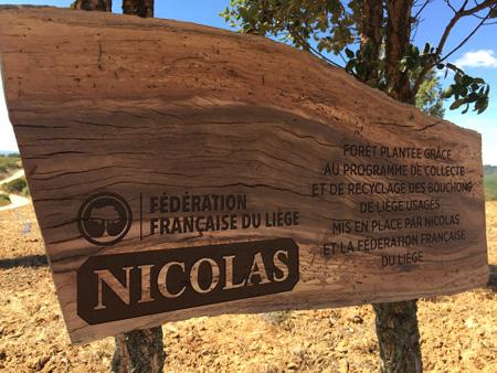 nicolas-liege